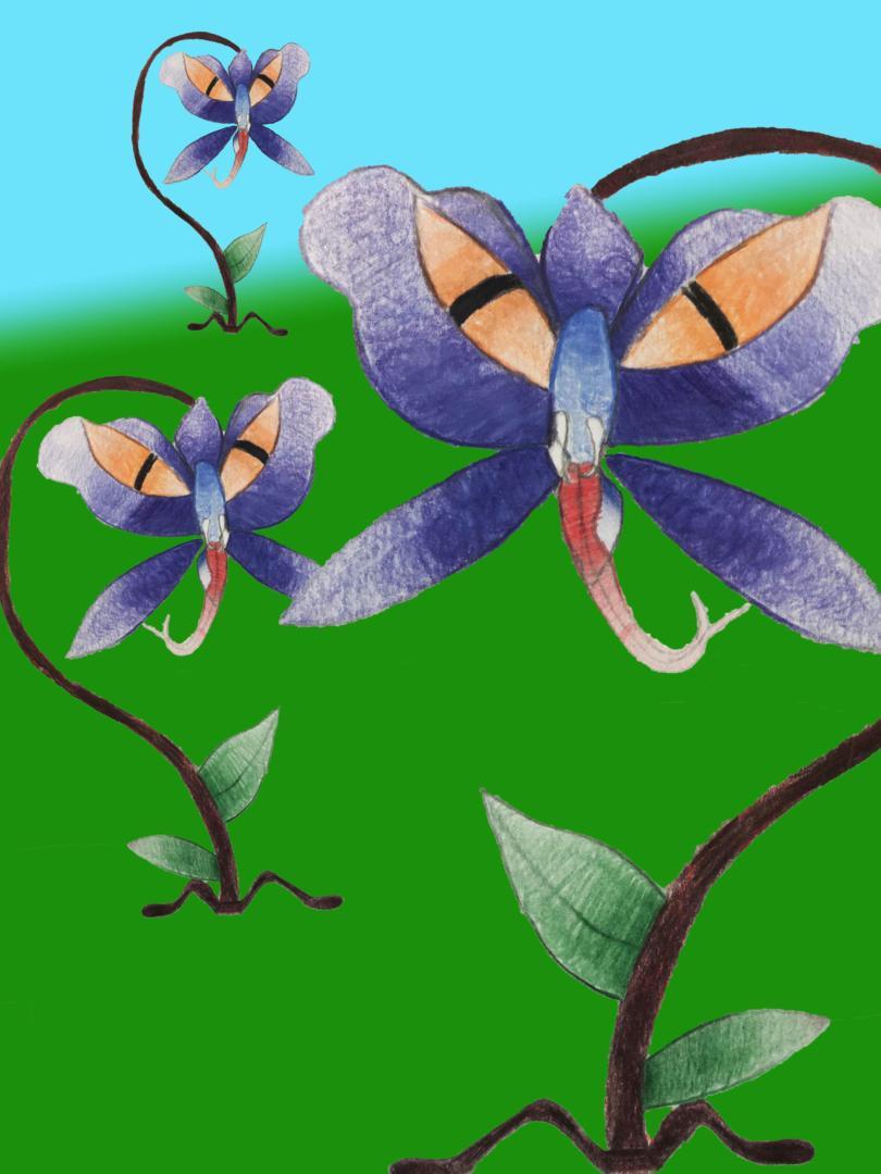 «L'enfer des Orchidées» (Gestalterische Arbeit – 7G)