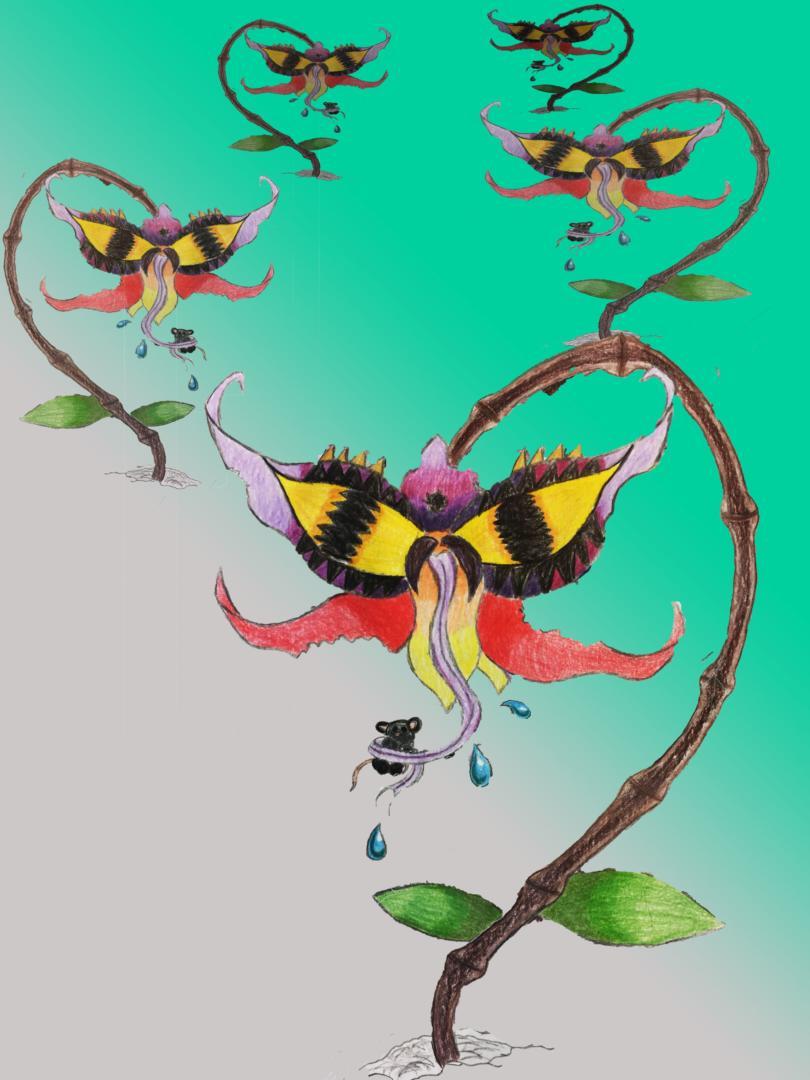 « L'enfer des Orchidées » (Gestalterische Arbeit – 7G)